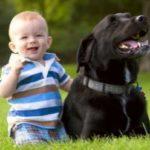 Целиакия связана с детскими респираторными инфекциями
